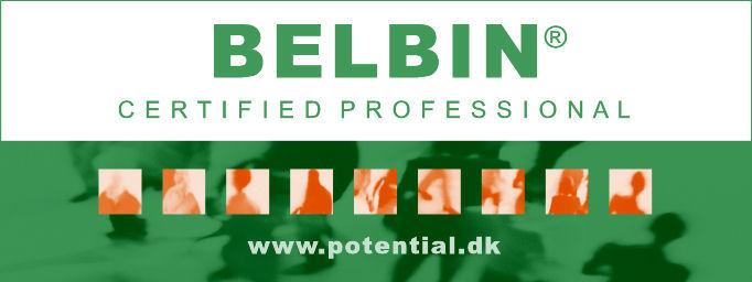 Belbin certificeret